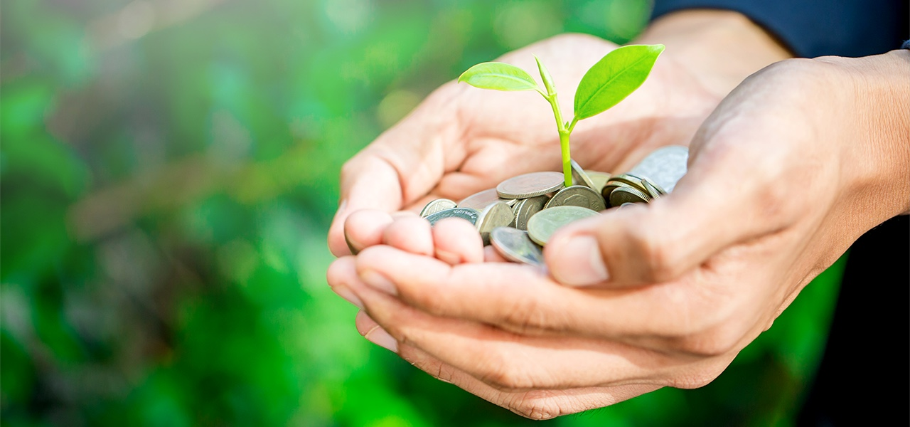 投融資における環境社会配慮支援(赤道原則対応等)のイメージ